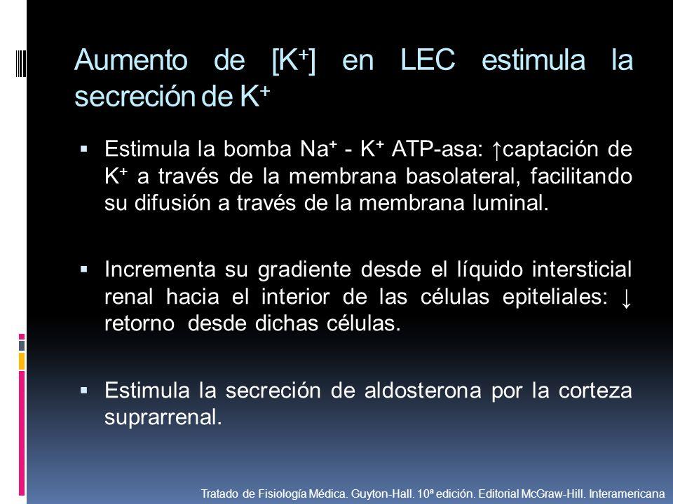 Aumento de [K+] en LEC estimula la secreción de K+
